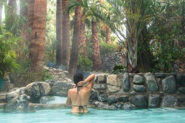 Woman relaxing in pool surrounded by palm trees
