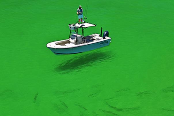 Fishing Rodeo Blog