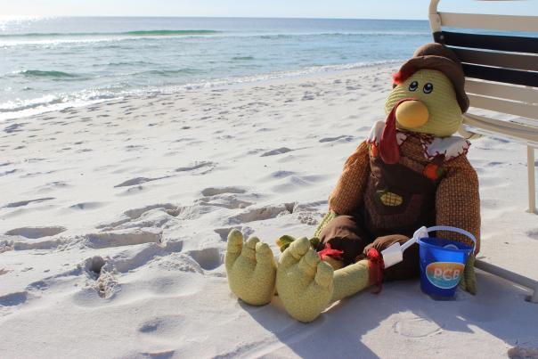 Turkey on the beach