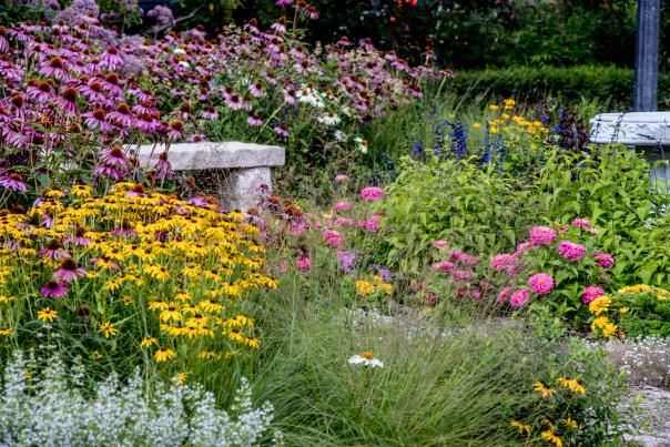 Explore Elgin Gardens
