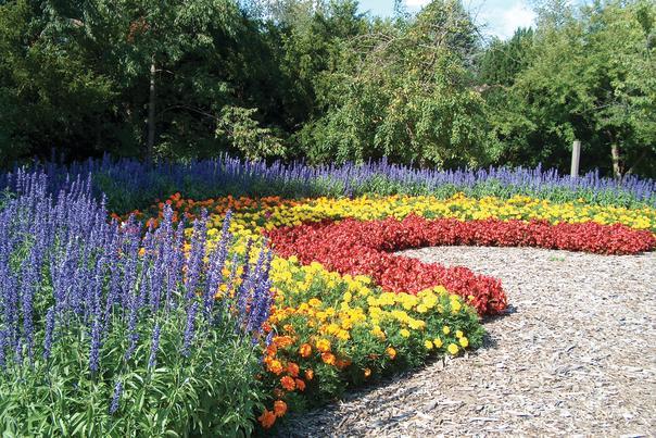 Rockford Gardens