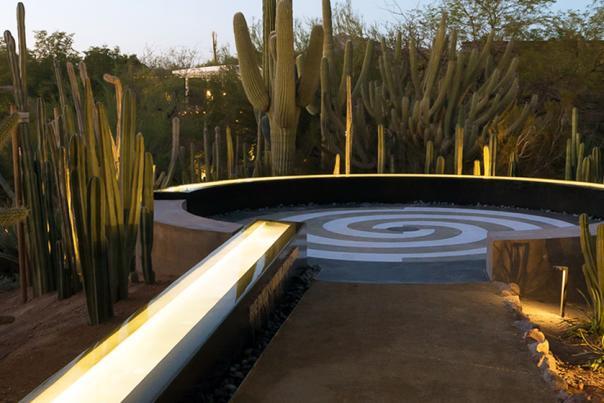 Desert Botanical Garden Trail HEADER