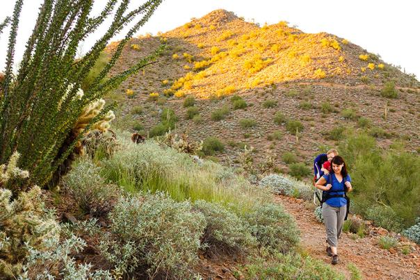person hiking on a trail in the phoenix mountains preserve