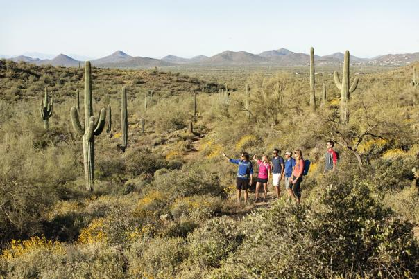 Family hiking through the Cave Creek, AZ desert