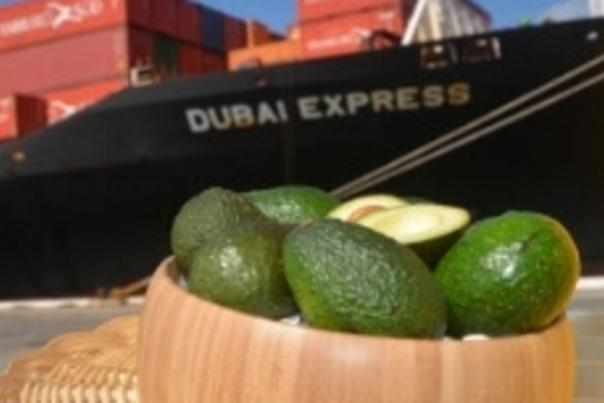 Image of a bowl of avocados with the cargo container vessel Dubai Express in the background.
