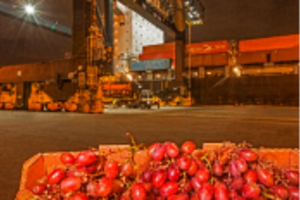 Image of grapes with a ship and gantry crane in the background.
