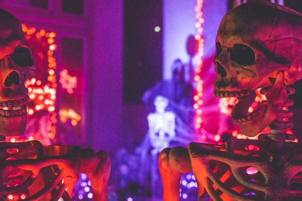 Fake skeleton decorations