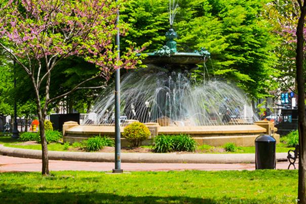 Summer at Burnside Park