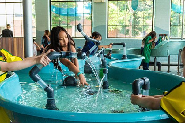Providence Children's Museum Header