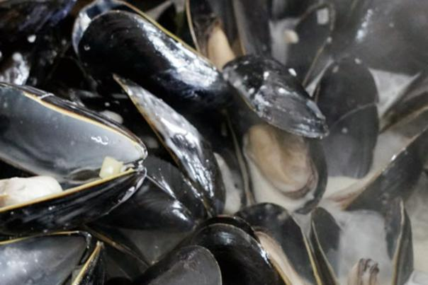 Steamed Mussels - Small Bites