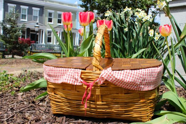 Picnic Basket in Meadow Park