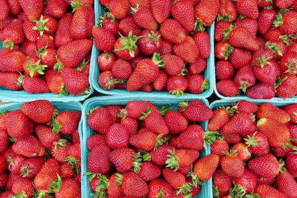 Strawberries from Richmond Country Farms