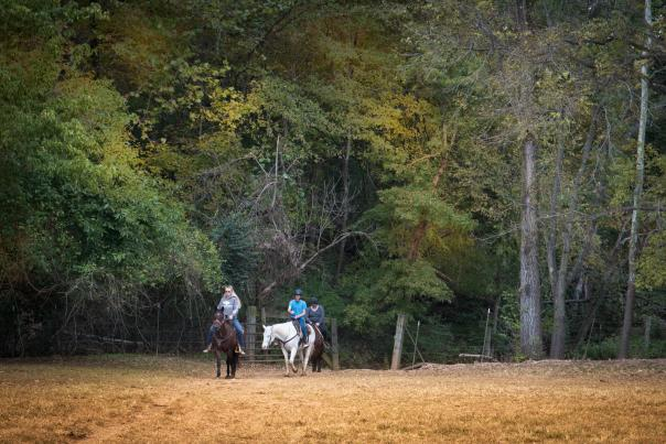 Pere Marquette Riding Stables on trails