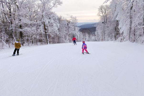 Bristol Mountain Skiing & Snowboarding