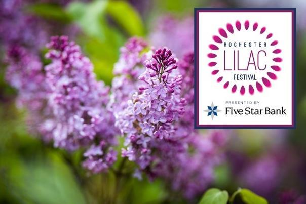 Lilac Festival Header