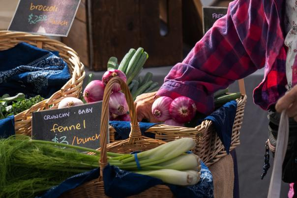 Canyonville Farmer's Market