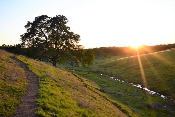 Deer Creek Hills Preservation Area, Hiking Trail