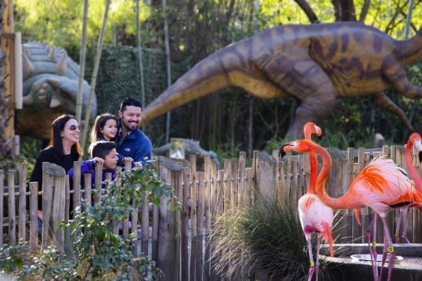Sacramento Zoo family activities