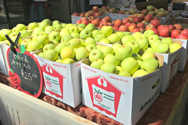 Apple Hill Apples