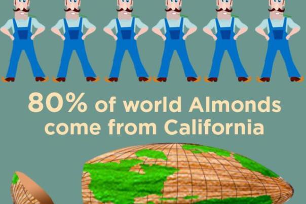 california_almond_inforgraphic_w640