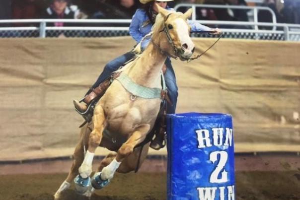 western_horse_expo