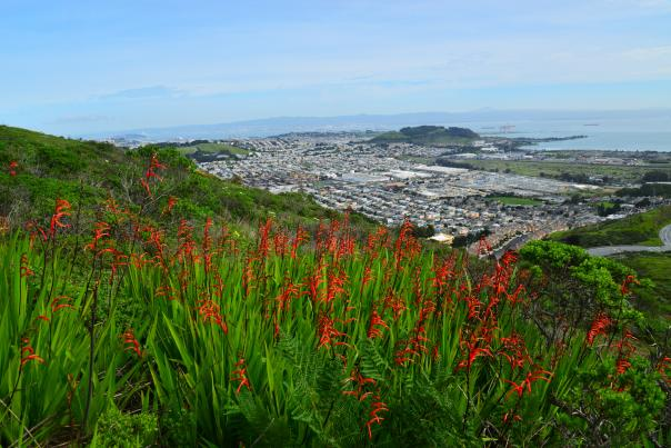 SanBruno_Mountain_View_SanMateoCounty_SiliconValley