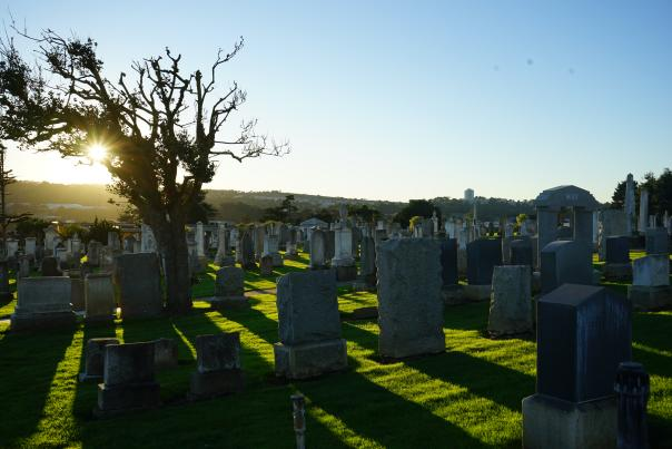 A cemetery at dusk in Colma, CA