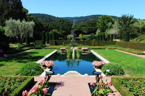 View of the Sunken Garden in Filoli located in Woodside California