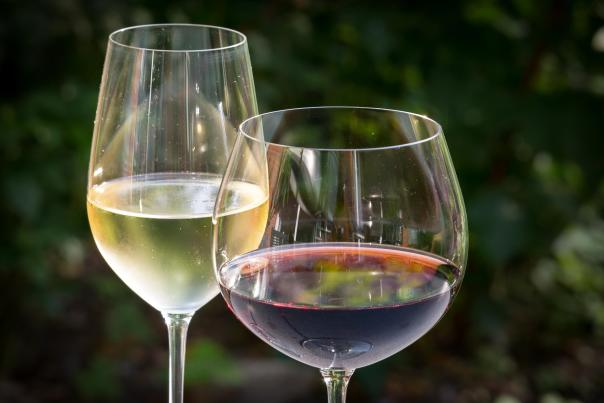 Wine glasses filled with white and red wines