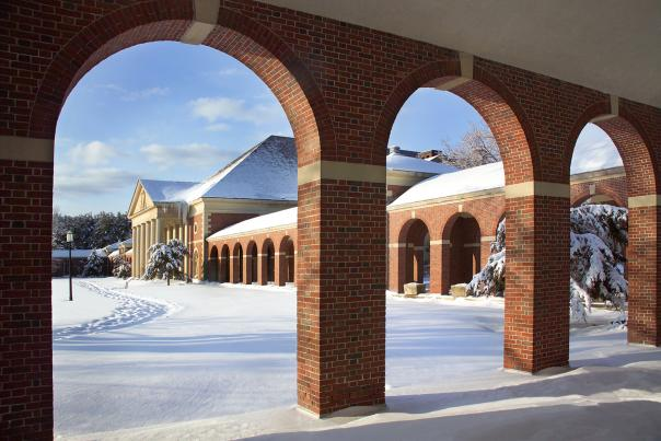 Hall of springs arches in the snow