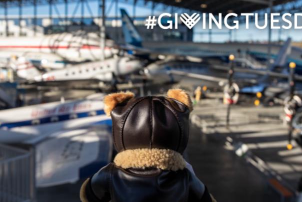 stuffed bear looking at museum of flight