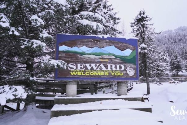 Video Thumbnail - vimeo - Seward Chamber of Commerce's response to COVID-19