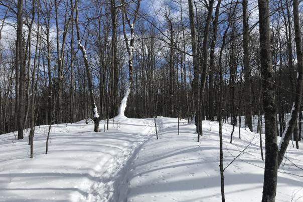 Kettles Trail Trek Back