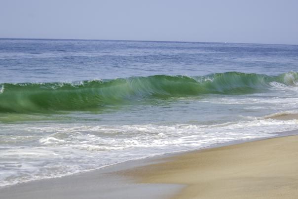 Blue Shutters Beach