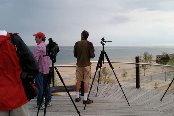 Indiana Dunes Birding Festival Recap - Part Two