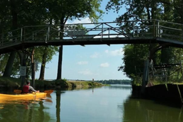 Kayaking On Cedar Lake