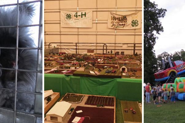 Jeanette Jaskula Jasper & Newton County Fairs