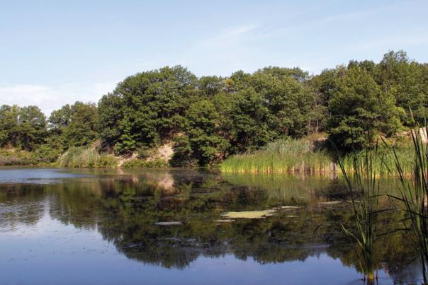 Miller Woods Lagoon