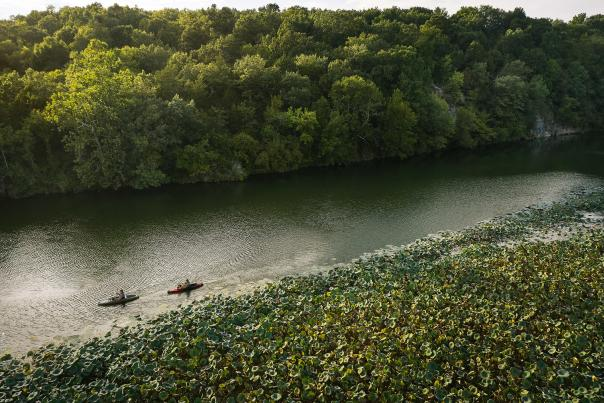 Kayaking on Lake Springfield