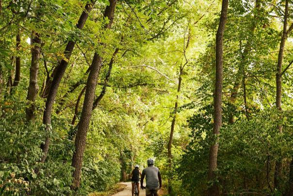 Galloway Creek Ozark Greenways