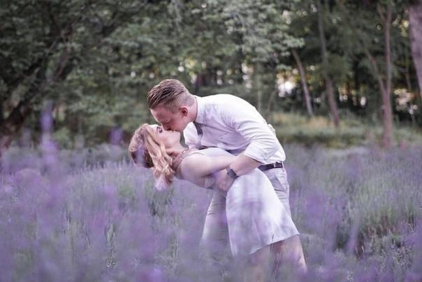Lavender Falls Farm