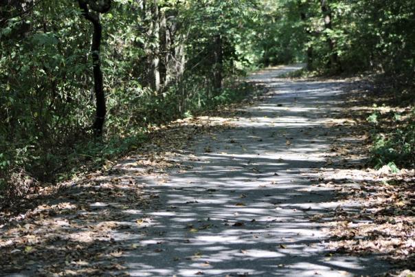 Wilson's Creek Greenway