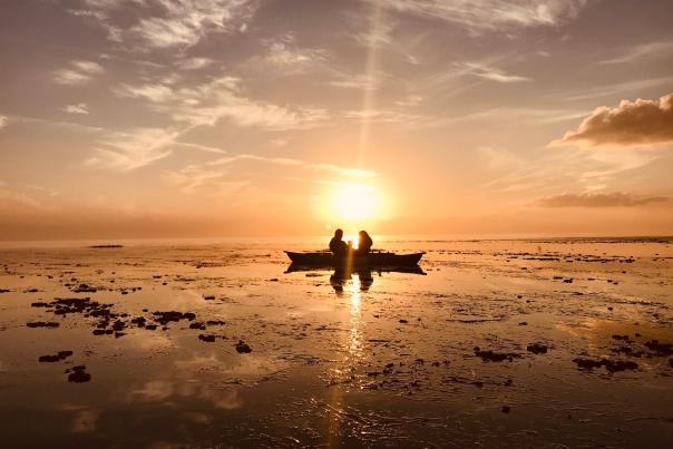 Bayou Adventure's sunset paddle