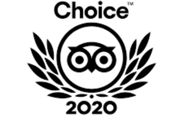 Travelers' Choice 2020 Logo