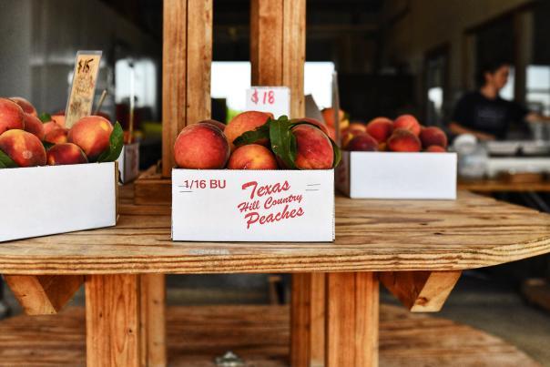 Influencer Itineraries-Shruthi Parker-Fredericksburg-Peaches