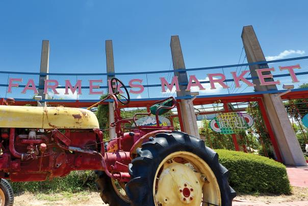 Farmers Market-Shopping-Dallas-H
