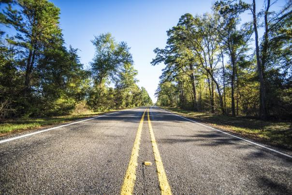 Scenic Drives_Piney Woods_H