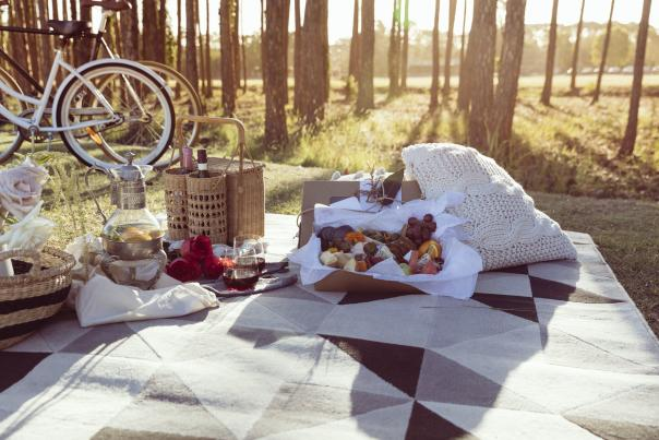 Cycling-Food-Art-picnic-with-bikes