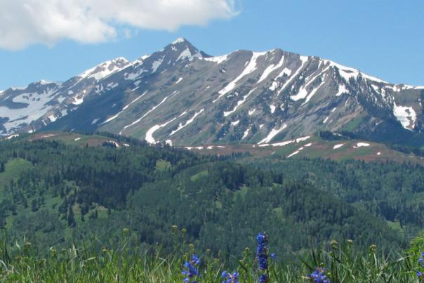 Mt. Nebo Spring 2
