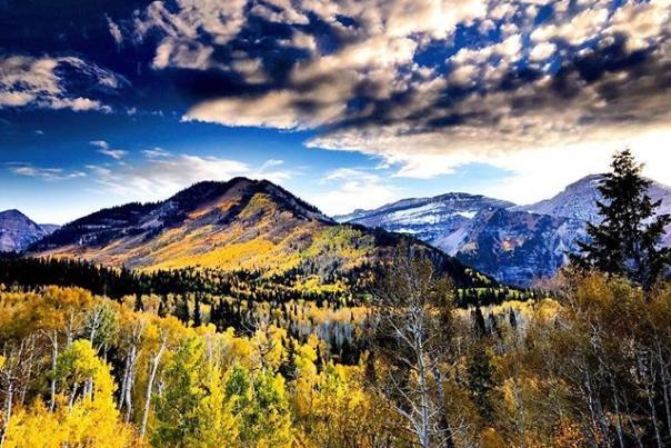 AF Canyon